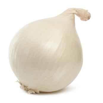 White_Onion__90881